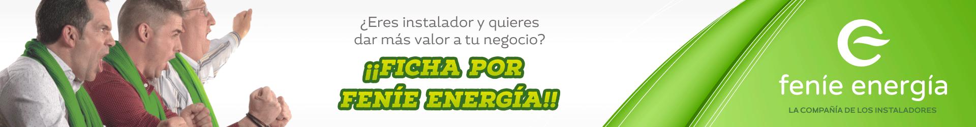 layer1-FENIE-ENERGIA